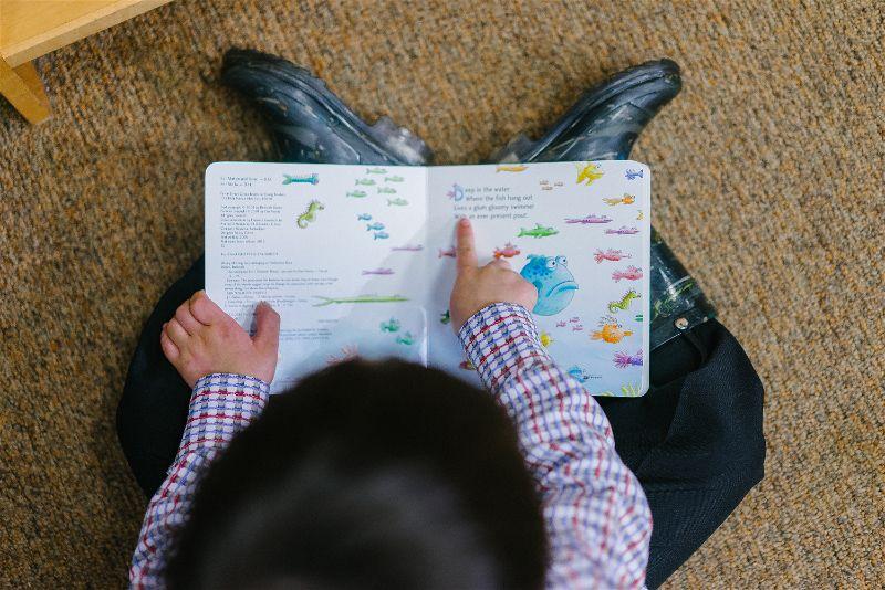 criança lendo sobre peixes